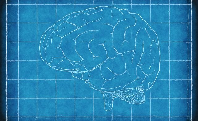 Brain Science: How business can benefit | South Sound Business